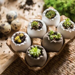 czvetochnyj gorshok keramicheskij eggs juhan 7