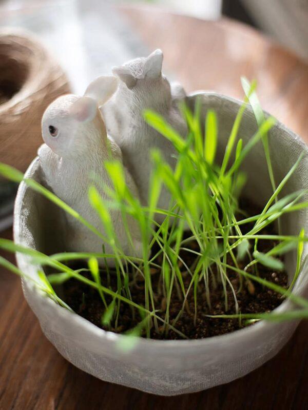 dekorativnyj czvetochnyj gorshok bunnies juhan 4