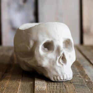 dekorativnyj czvetochnyj gorshok skull juhan 4