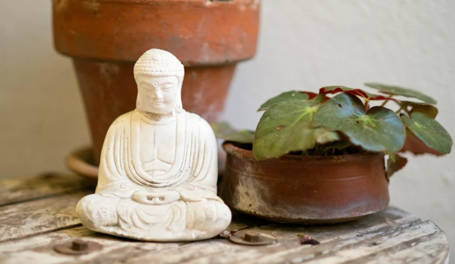 fen shuj v interere kak ispolzovat obychnye predmety dekora duhovnye napominaniya