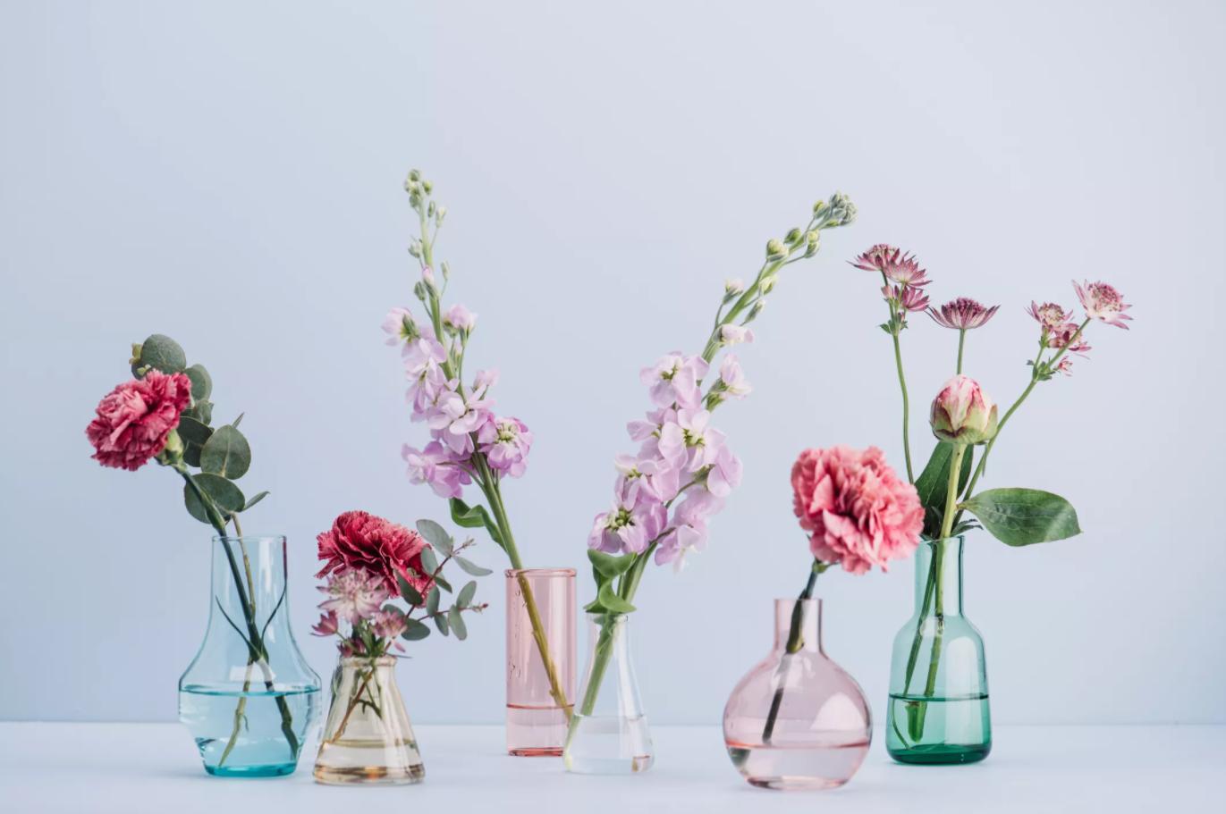 fen shuj v interere kak ispolzovat obychnye predmety dekora vazy i kashpo